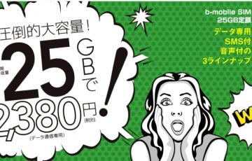 b-mobileSIM_25GB定額___b-mobile.png